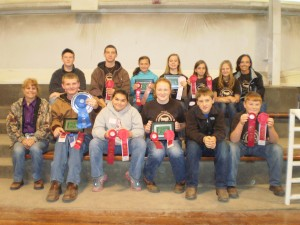 Cover photo for Wayne County Winners at the State Fair