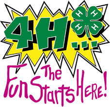 Cover photo for 4-H State Council Conference