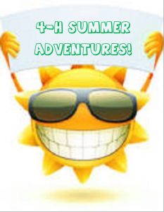 Cover photo for 4-H Summer Adventurers Day Camp 2015