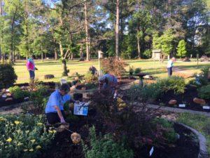 master gardener volunteers working in a garden