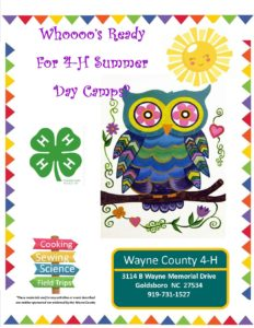 Cover photo for Whooose Ready for 4-H Summer Day Camps?